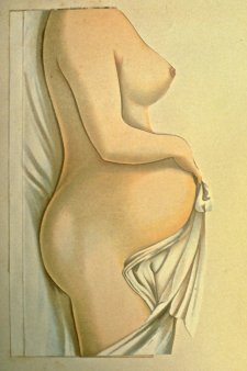 Ta zelo nosečnice slika modeli zelo blizu odlična drža