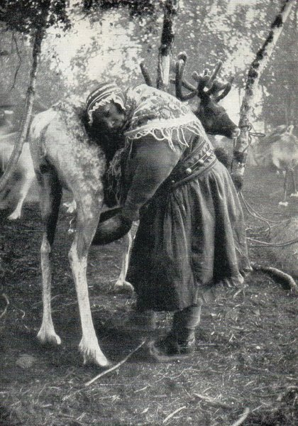 Woman helping Fredrik's grandmother milk reindeer